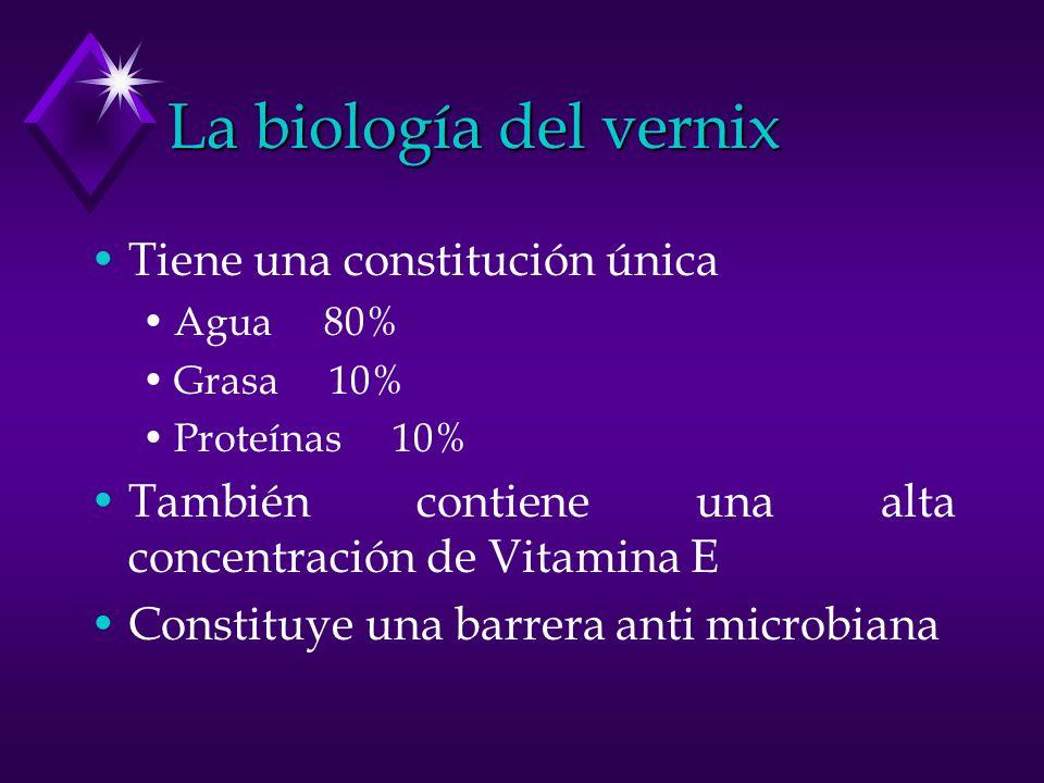 La biología del vernix Tiene una constitución única Agua 80% Grasa 10% Proteínas 10% También contiene una alta concentración de Vitamina E Constituye