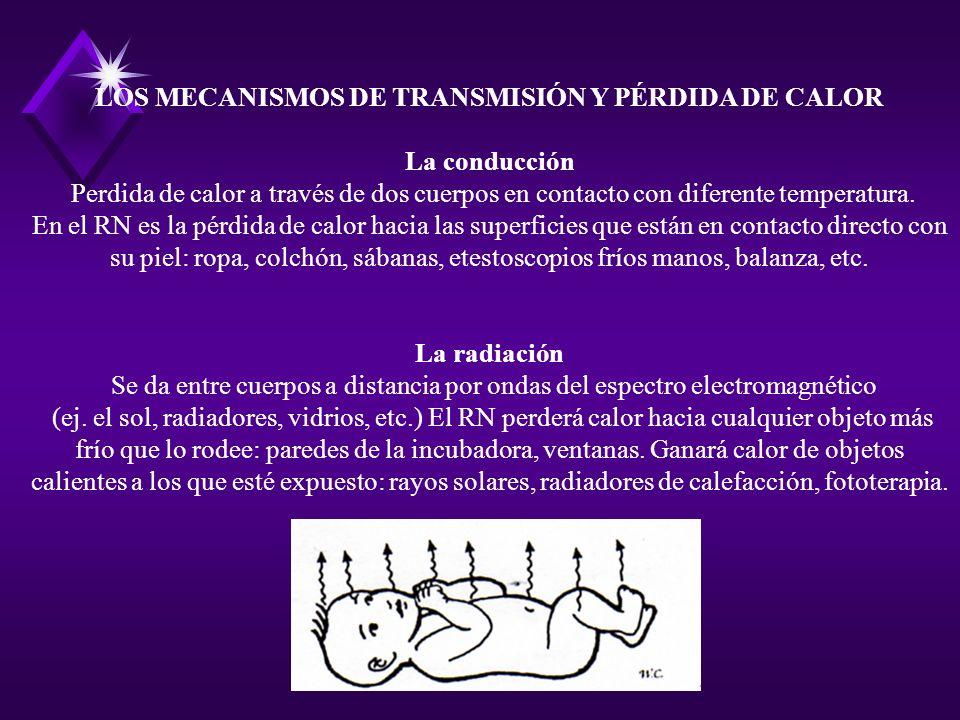LOS MECANISMOS DE TRANSMISIÓN Y PÉRDIDA DE CALOR La conducción Perdida de calor a través de dos cuerpos en contacto con diferente temperatura. En el R