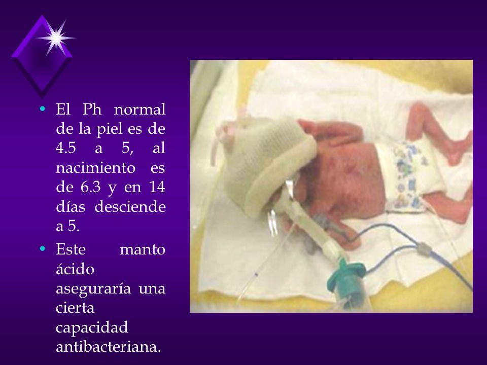 El Ph normal de la piel es de 4.5 a 5, al nacimiento es de 6.3 y en 14 días desciende a 5. Este manto ácido aseguraría una cierta capacidad antibacter