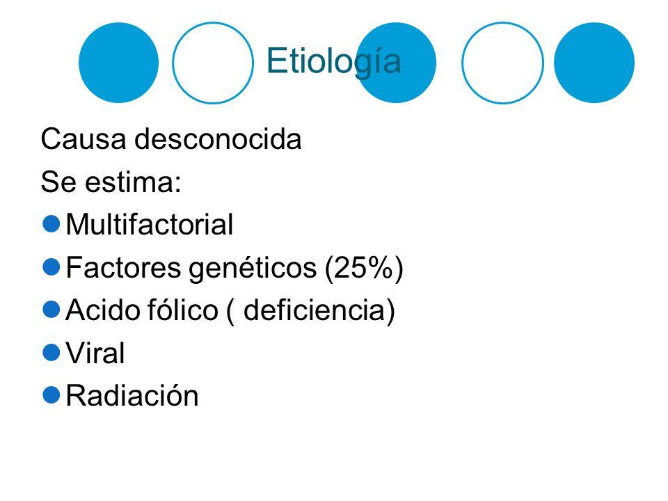 Etiología Causa desconocida Se estima: Multifactorial Factores genéticos (25%) Acido fólico ( deficiencia) Viral Radiación