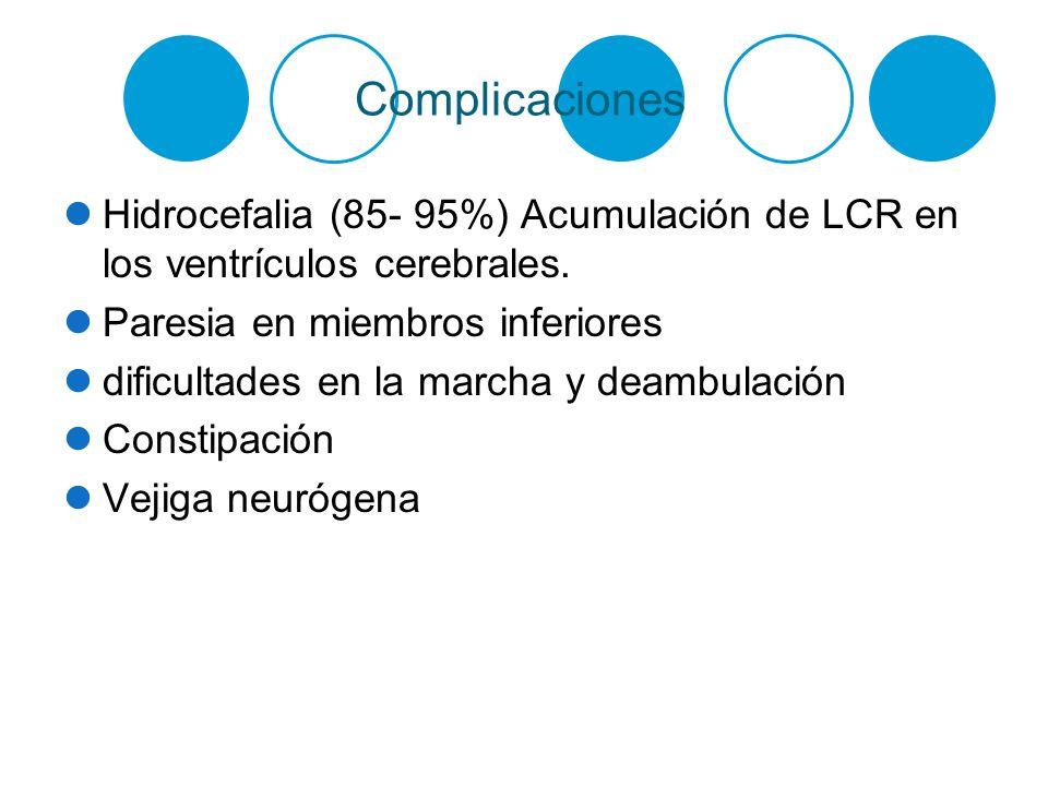 Complicaciones Hidrocefalia (85- 95%) Acumulación de LCR en los ventrículos cerebrales. Paresia en miembros inferiores dificultades en la marcha y dea