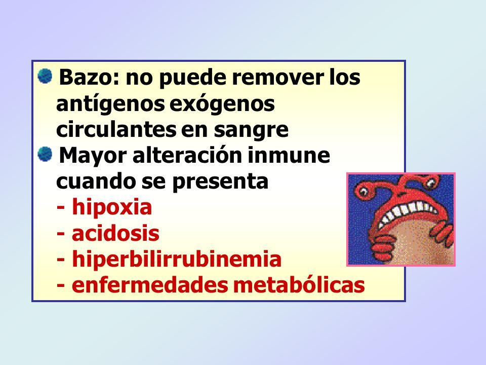 Bazo: no puede remover los antígenos exógenos circulantes en sangre Mayor alteración inmune cuando se presenta - hipoxia - acidosis - hiperbilirrubine