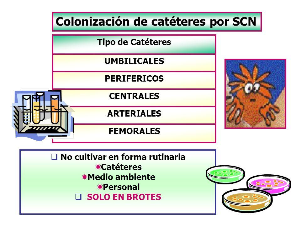 Colonización de catéteres por SCN No cultivar en forma rutinaria Catéteres Medio ambiente Personal SOLO EN BROTES FEMORALES ARTERIALES CENTRALES PERIF