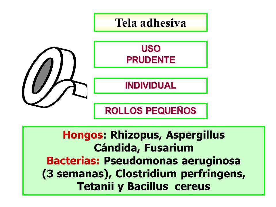USOPRUDENTE ROLLOS PEQUEÑOS Tela adhesiva Hongos: Rhizopus, Aspergillus Cándida, Fusarium Bacterias: Pseudomonas aeruginosa (3 semanas), Clostridium p