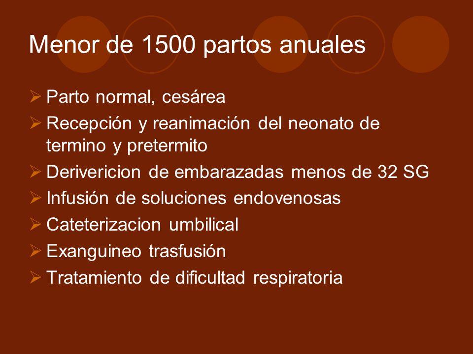 Menor de 1500 partos anuales Parto normal, cesárea Recepción y reanimación del neonato de termino y pretermito Derivericion de embarazadas menos de 32 SG Infusión de soluciones endovenosas Cateterizacion umbilical Exanguineo trasfusión Tratamiento de dificultad respiratoria
