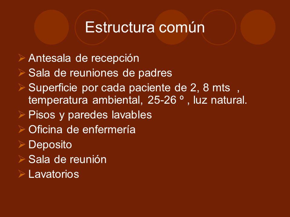 Estructura común Antesala de recepción Sala de reuniones de padres Superficie por cada paciente de 2, 8 mts, temperatura ambiental, 25-26 º, luz natural.