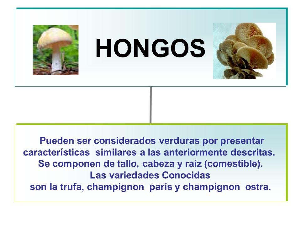 HONGOS Pueden ser considerados verduras por presentar características similares a las anteriormente descritas.