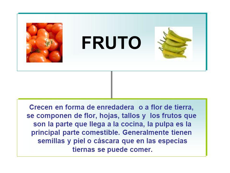 FRUTO Crecen en forma de enredadera o a flor de tierra, se componen de flor, hojas, tallos y los frutos que son la parte que llega a la cocina, la pulpa es la principal parte comestible.