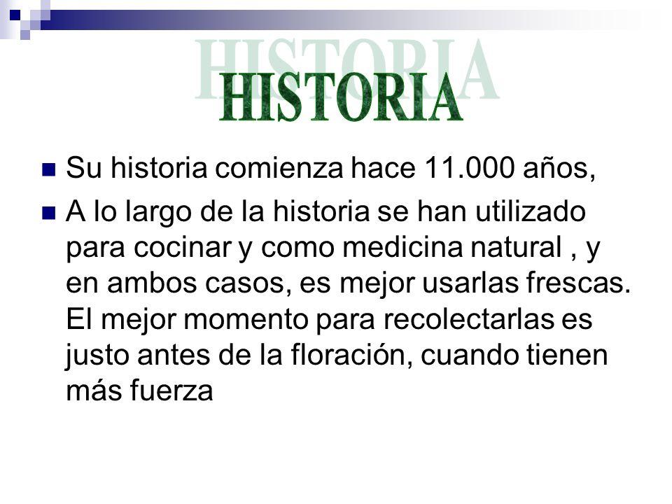 Su historia comienza hace 11.000 años, A lo largo de la historia se han utilizado para cocinar y como medicina natural, y en ambos casos, es mejor usa