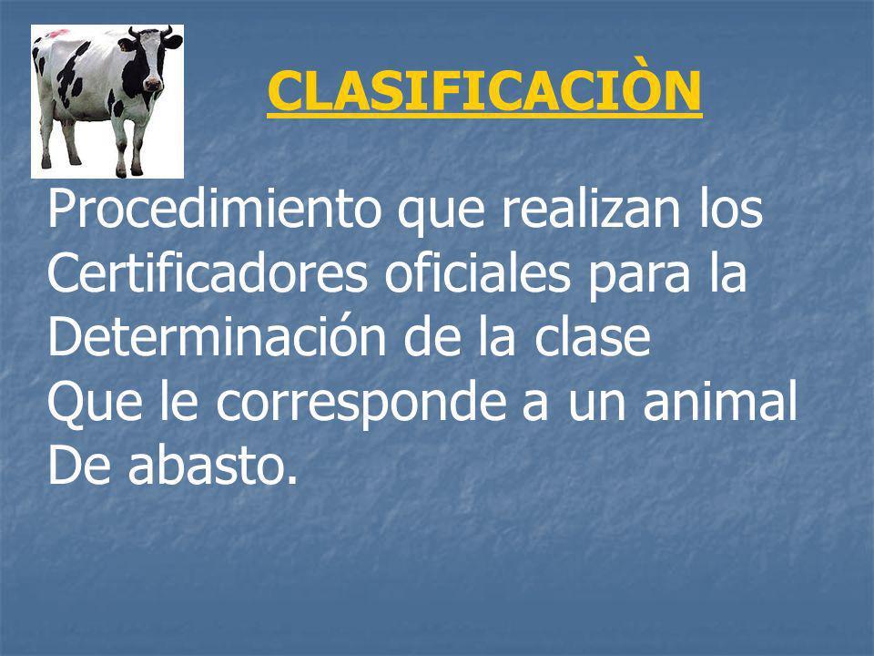 Procedimiento que realizan los Certificadores oficiales para la Determinación de la clase Que le corresponde a un animal De abasto. CLASIFICACIÒN
