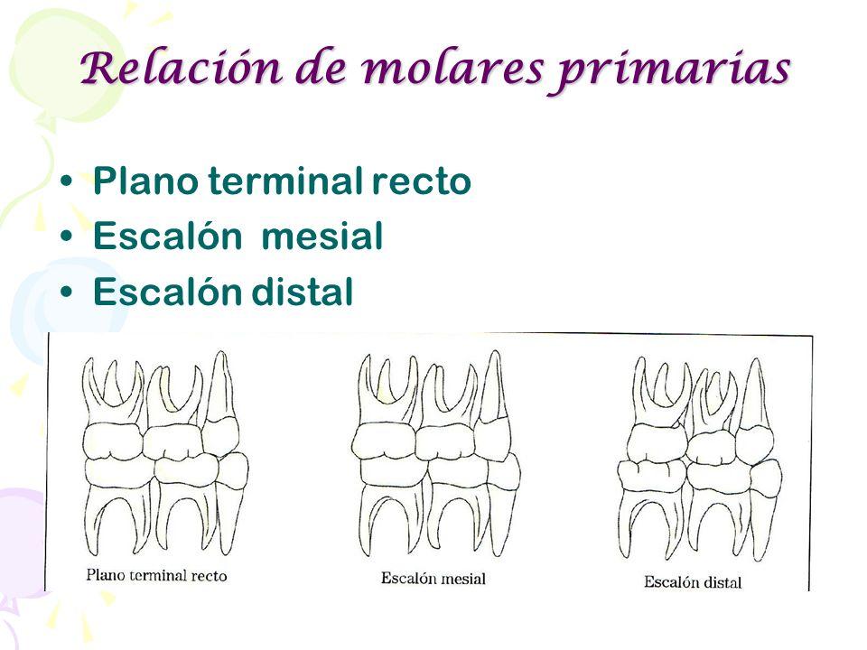 Relación de molares primarias Plano terminal recto Escalón mesial Escalón distal Escalón Distal Plano terminal recto