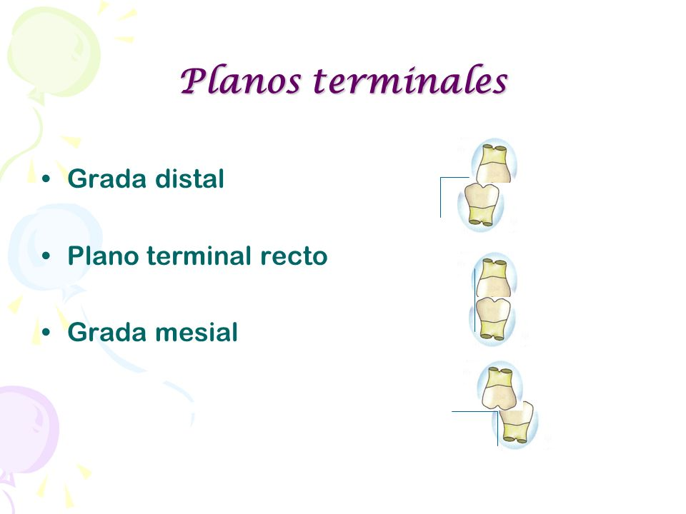 Planos terminales Grada distal Plano terminal recto Grada mesial