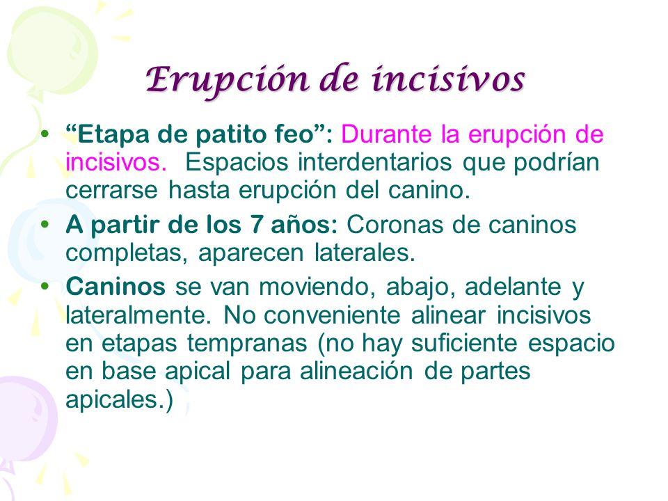 Erupción de incisivos Etapa de patito feo: Durante la erupción de incisivos. Espacios interdentarios que podrían cerrarse hasta erupción del canino. A