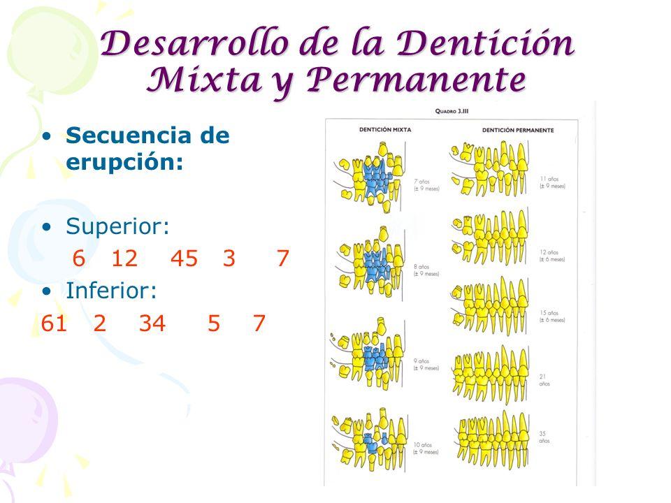 Desarrollo de la Dentición Mixta y Permanente Secuencia de erupción: Superior: 6 12 45 3 7 Inferior: 61 2 34 5 7
