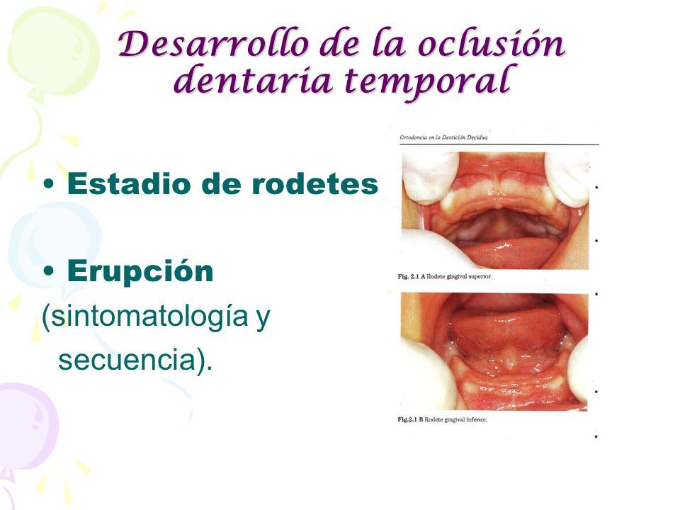 Desarrollo de la oclusión dentaria temporal Estadio de rodetes. Erupción (sintomatología y secuencia).