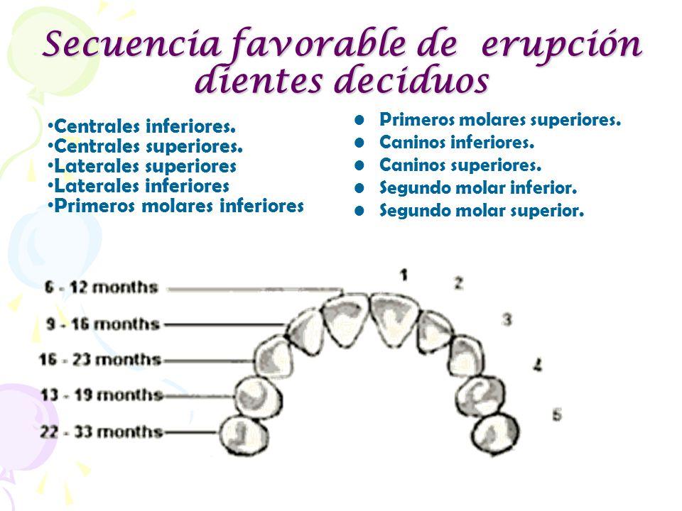 Secuencia favorable de erupción dientes deciduos Primeros molares superiores. Caninos inferiores. Caninos superiores. Segundo molar inferior. Segundo