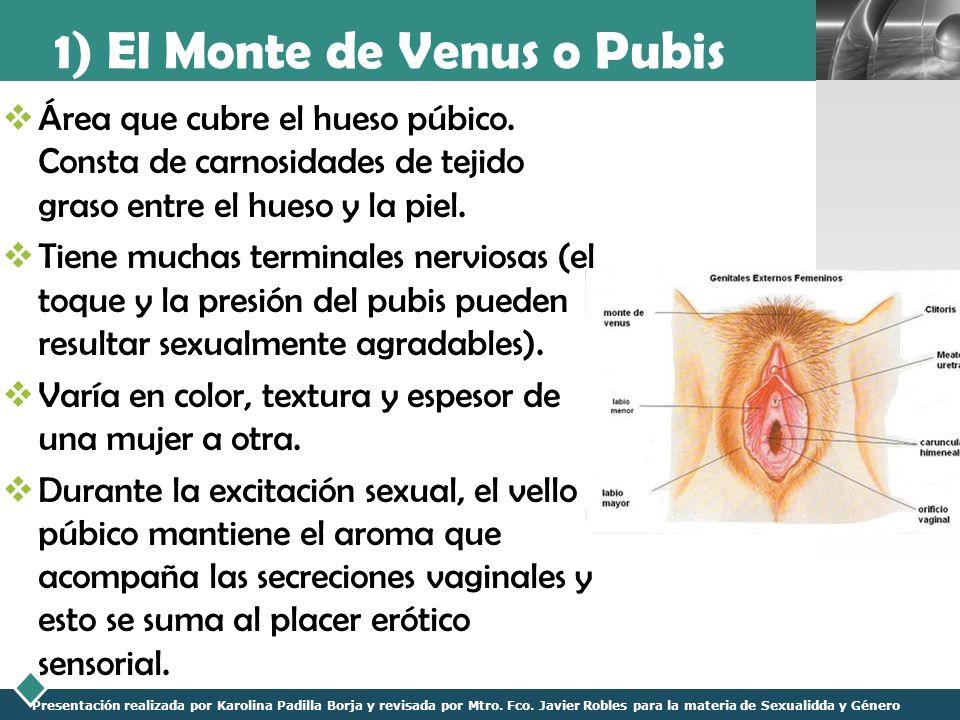 LOGO Presentación realizada por Karolina Padilla Borja y revisada por Mtro. Fco. Javier Robles para la materia de Sexualidda y Género 1) El Monte de V