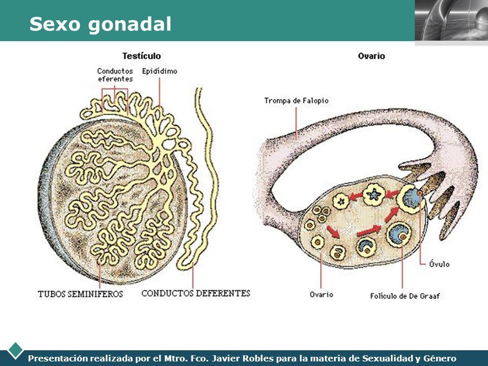 LOGO Presentación realizada por el Mtro. Fco. Javier Robles para la materia de Sexualidad y Género Sexo gonadal