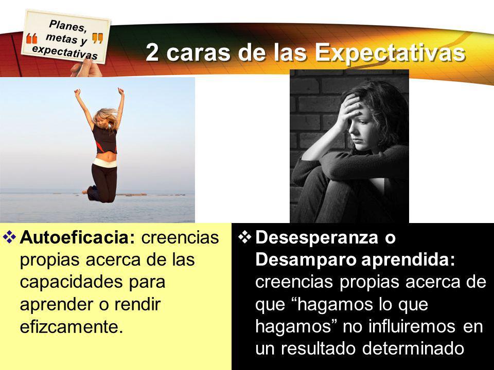 Planes, metas y expectativas Presentación realizada por Mtro. Fco. Javier Robles Ojeda para la materia de Motivación y Emoción 2 caras de las Expectat