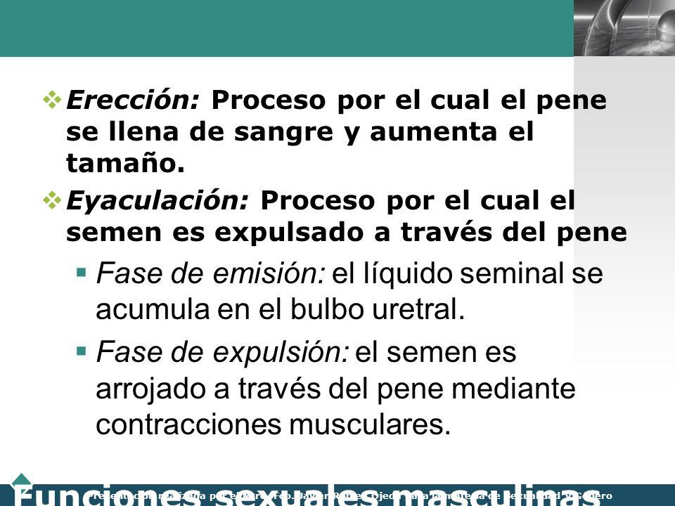 LOGO Presentación realizada por el Mtro. Fco. Javier Robles Ojeda para la materia de Sexualidad y Género Funciones sexuales masculinas Erección: Proce