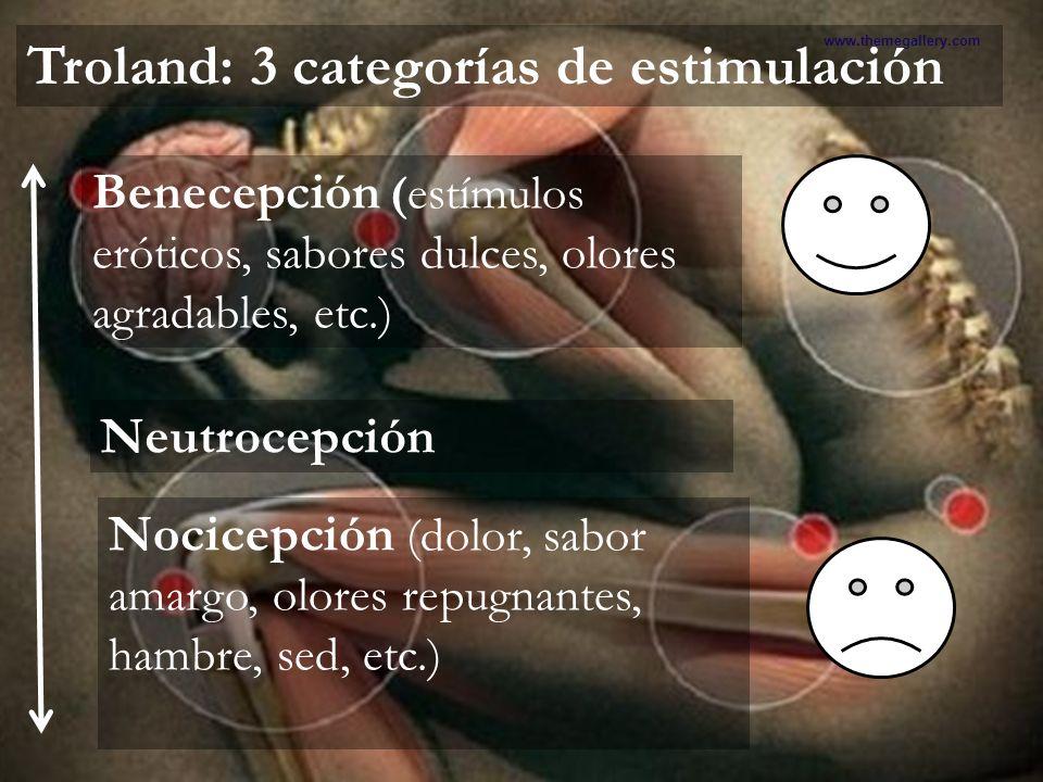 Teoría Hedonista Presentación realizada por el Mtro. Fco. Javier Robles Ojeda para la materia de Motivación y Emoción www.themegallery.com Troland: 3
