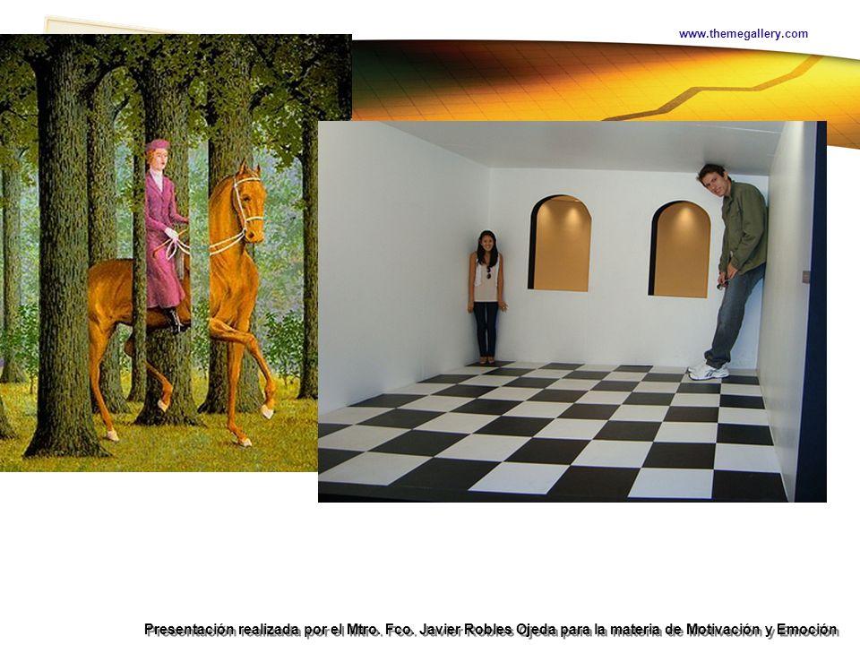 Teoría Hedonista Presentación realizada por el Mtro. Fco. Javier Robles Ojeda para la materia de Motivación y Emoción www.themegallery.com