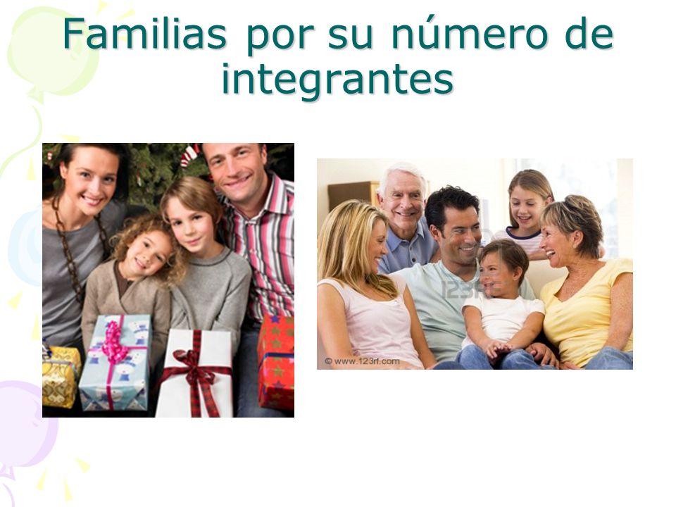 Familias por su número de integrantes