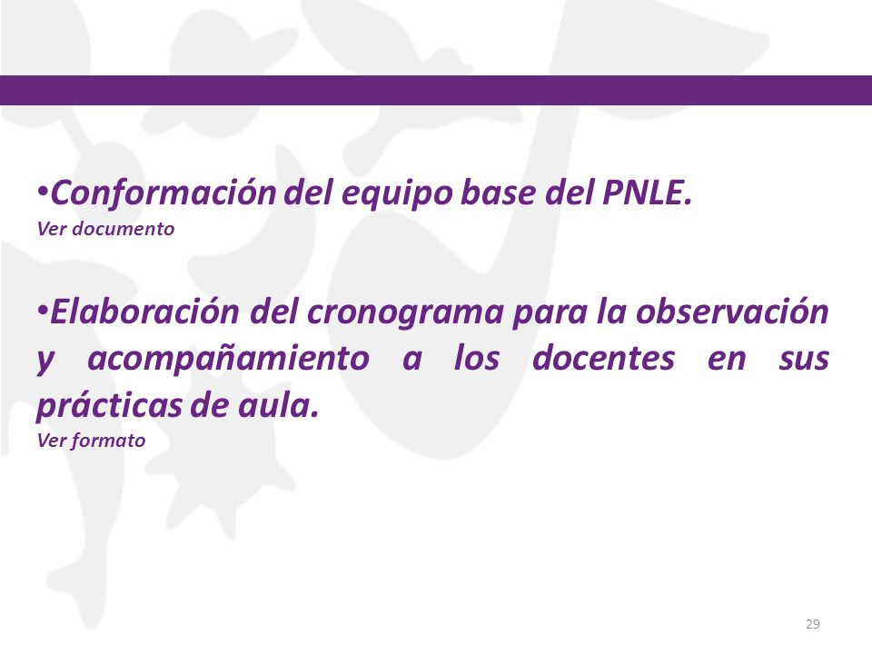 29 Conformación del equipo base del PNLE. Ver documento Elaboración del cronograma para la observación y acompañamiento a los docentes en sus práctica