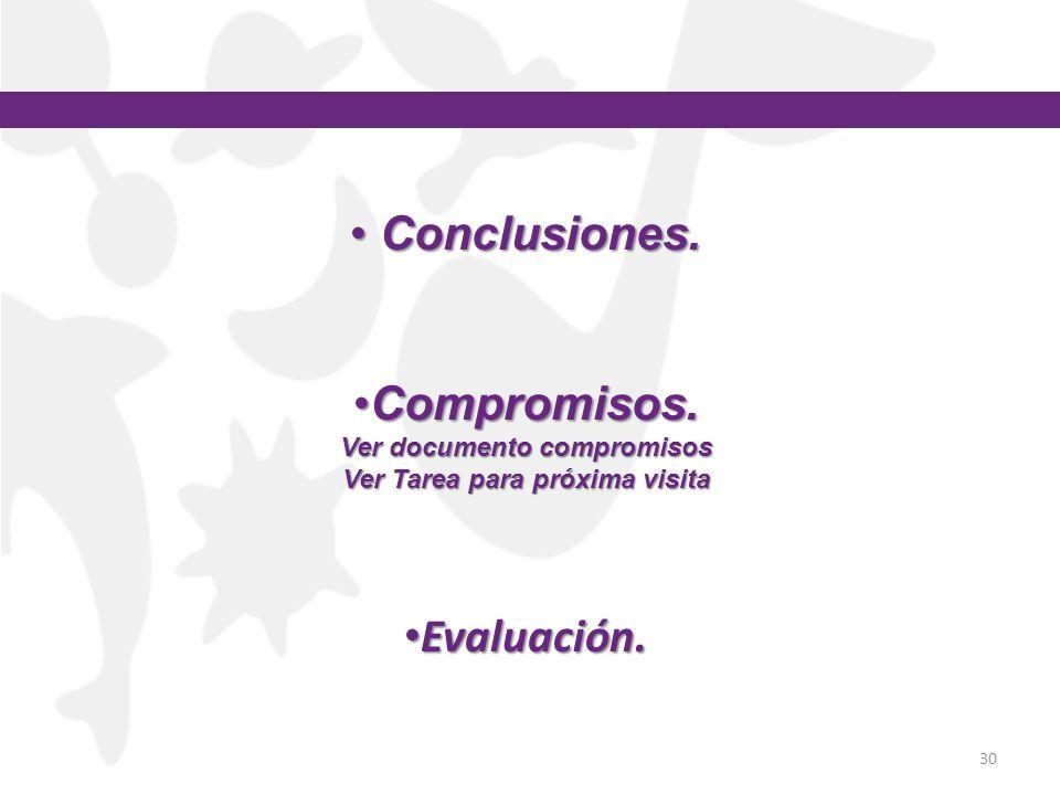30 Conclusiones. Conclusiones. Compromisos.Compromisos. Ver documento compromisos Ver Tarea para próxima visita Evaluación. Evaluación.