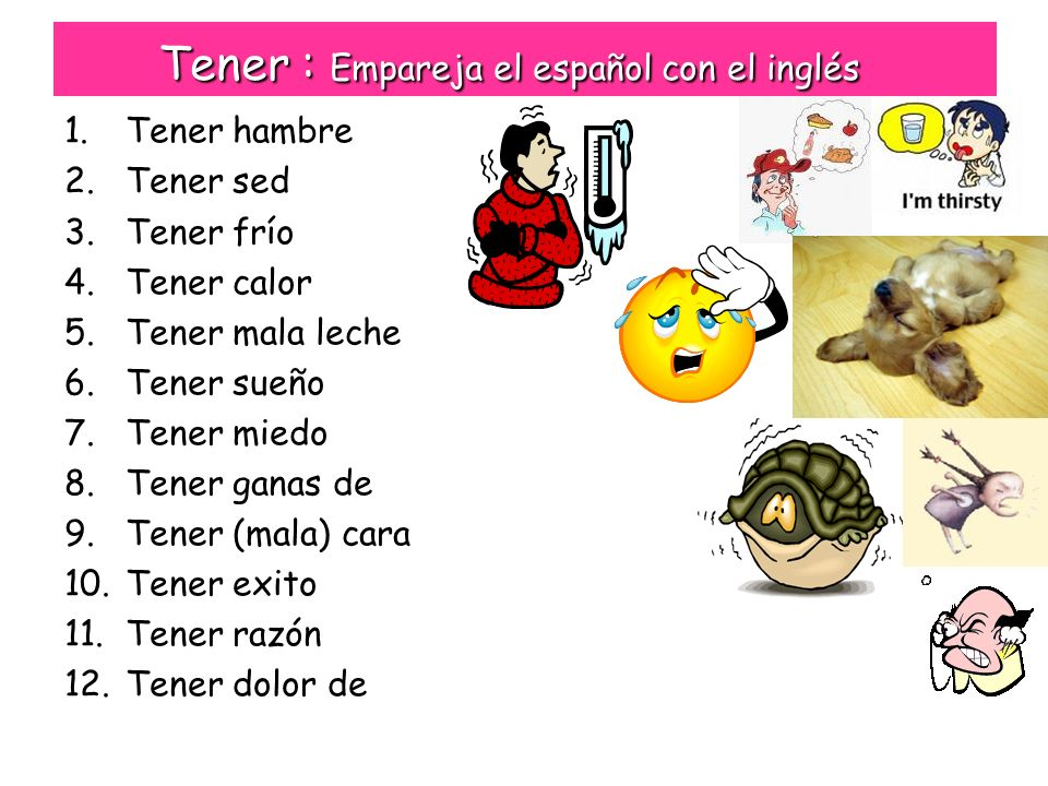 Tener : Empareja el español con el inglés 1.Tener hambre 2.Tener sed 3.Tener frío 4.Tener calor 5.Tener mala leche 6.Tener sueño 7.Tener miedo 8.Tener ganas de 9.Tener (mala) cara 10.Tener exito 11.Tener razón 12.Tener dolor de a.To be hungry b.To be thirsty c.To be cold d.To be hot e.To be bad tempered f.To be sleepy g.To be scared/ afraid h.To want to i.To be cheeky j.To be successful k.To be right l.To be in pain