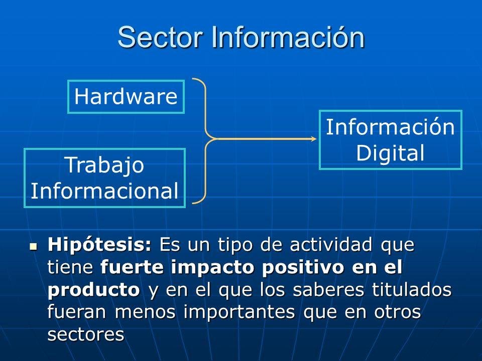 Sector Información Información Digital Hardware Trabajo Informacional Hipótesis: Es un tipo de actividad que tiene fuerte impacto positivo en el producto y en el que los saberes titulados fueran menos importantes que en otros sectores Hipótesis: Es un tipo de actividad que tiene fuerte impacto positivo en el producto y en el que los saberes titulados fueran menos importantes que en otros sectores