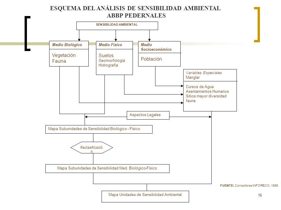 16 ESQUEMA DEL ANÁLISIS DE SENSIBILIDAD AMBIENTAL ABBP PEDERNALES SENSIBILIDAD AMBIENTAL Variables Especiales Manglar Cursos de Agua Asentamientos Hum