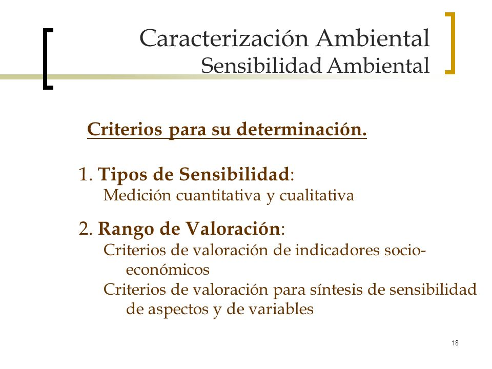 18 Caracterización Ambiental Sensibilidad Ambiental 1. Tipos de Sensibilidad : Medición cuantitativa y cualitativa 2. Rango de Valoración : Criterios