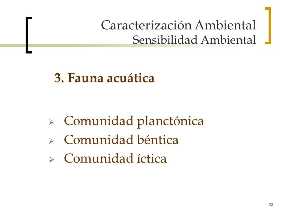 23 Caracterización Ambiental Sensibilidad Ambiental Comunidad planctónica Comunidad béntica Comunidad íctica 3. Fauna acuática