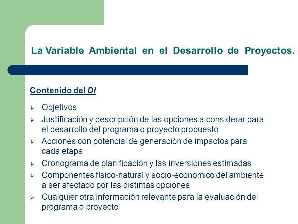 La Variable Ambiental en el Desarrollo de Proyectos. Contenido del DI Objetivos Justificación y descripción de las opciones a considerar para el desar