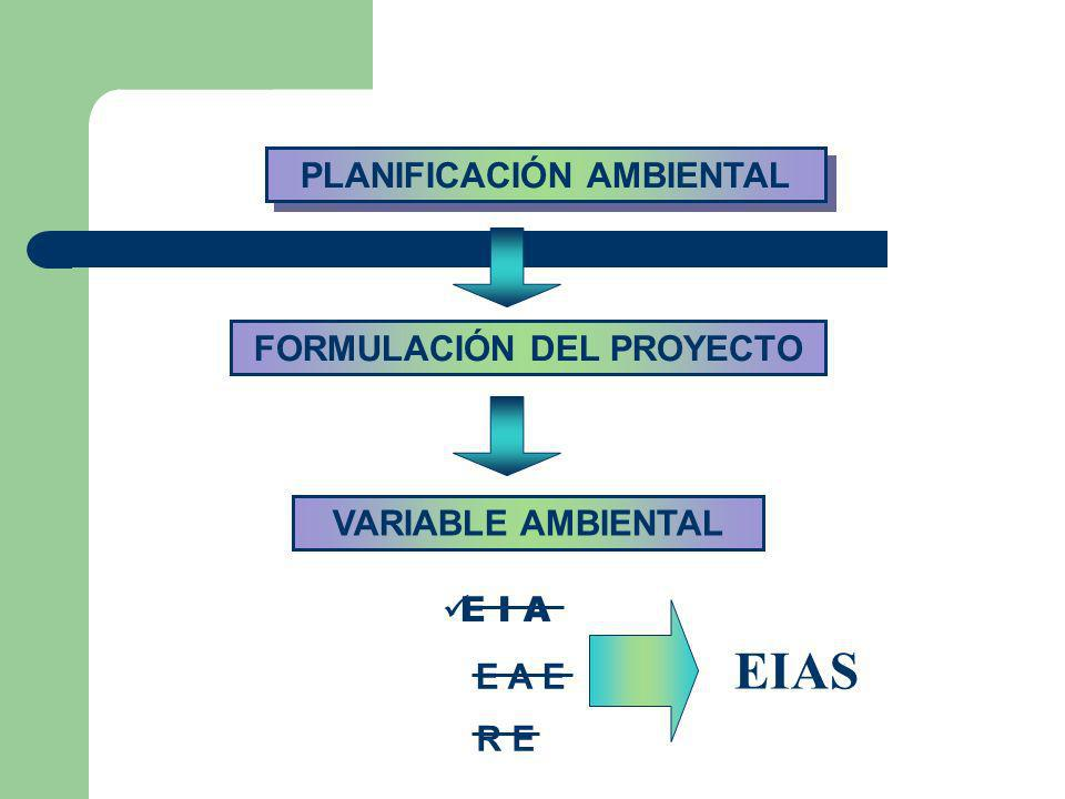 VARIABLE AMBIENTAL FORMULACIÓN DEL PROYECTO E I A E A E R E PLANIFICACIÓN AMBIENTAL EIAS