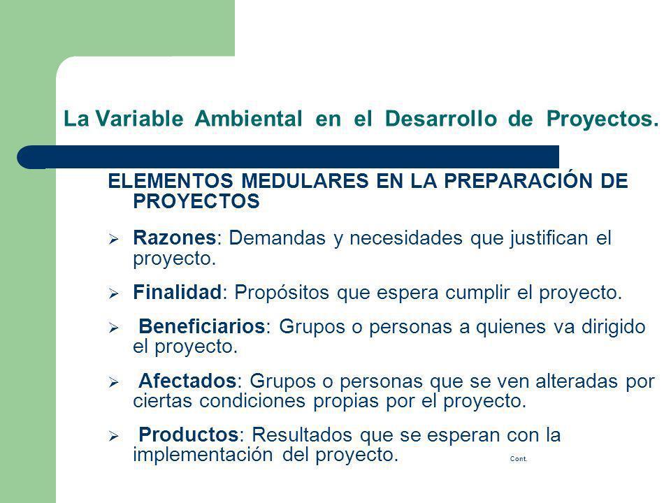 ELEMENTOS MEDULARES EN LA PREPARACIÓN DE PROYECTOS Razones: Demandas y necesidades que justifican el proyecto. Finalidad: Propósitos que espera cumpli