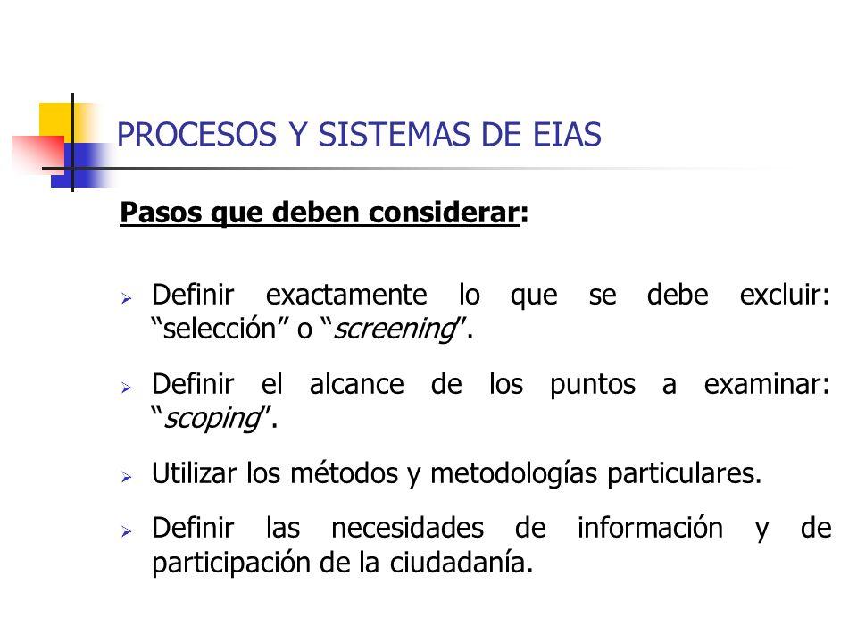 PROCESOS Y SISTEMAS DE EIAS Pasos que deben considerar: Definir exactamente lo que se debe excluir: selección o screening. Definir el alcance de los p