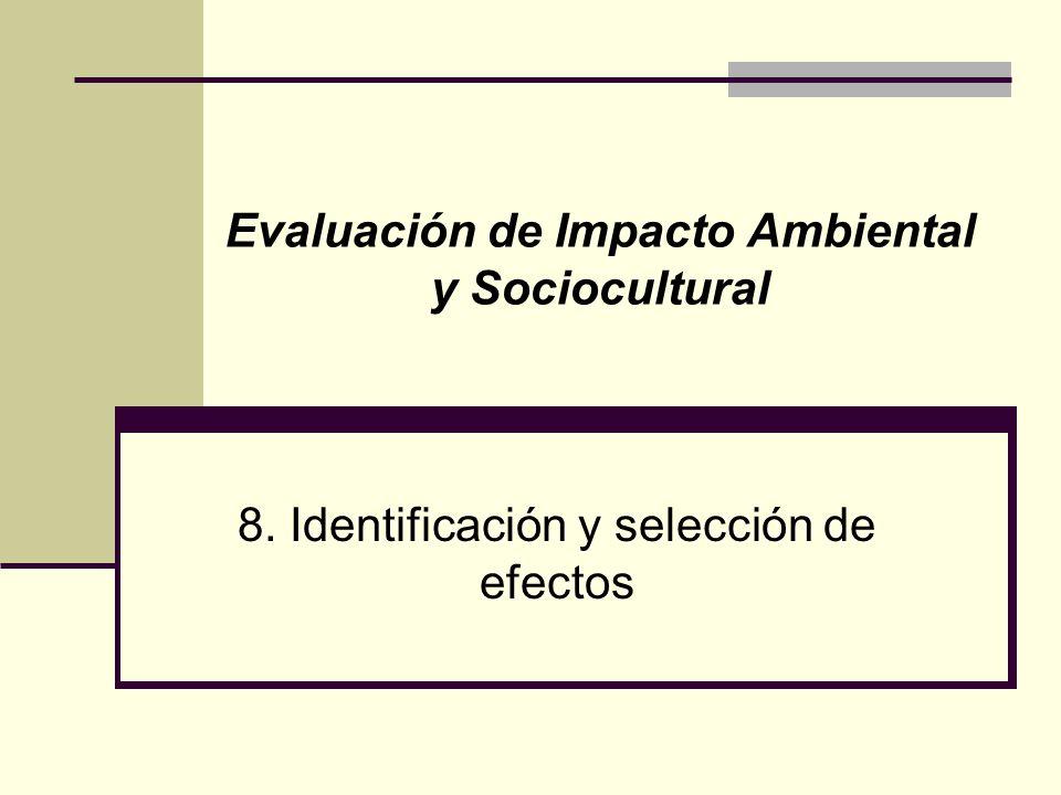 3 Identificación y selección de efectos Objetivo Proporcionar un conjunto amplio de predicciones relativas a los efectos que sobre el ambiente pueda generar un proyecto en sus etapas de construcción, operación y desmantelamiento, para relacionar los que deben ser evaluados.