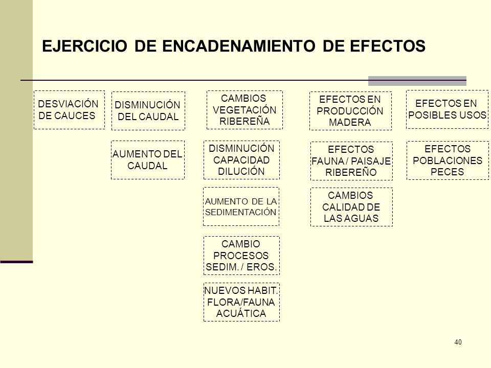 40 DESVIACIÓN DE CAUCES DISMINUCIÓN DEL CAUDAL AUMENTO DEL CAUDAL CAMBIOS VEGETACIÓN RIBEREÑA DISMINUCIÓN CAPACIDAD DILUCIÓN AUMENTO DE LA SEDIMENTACI