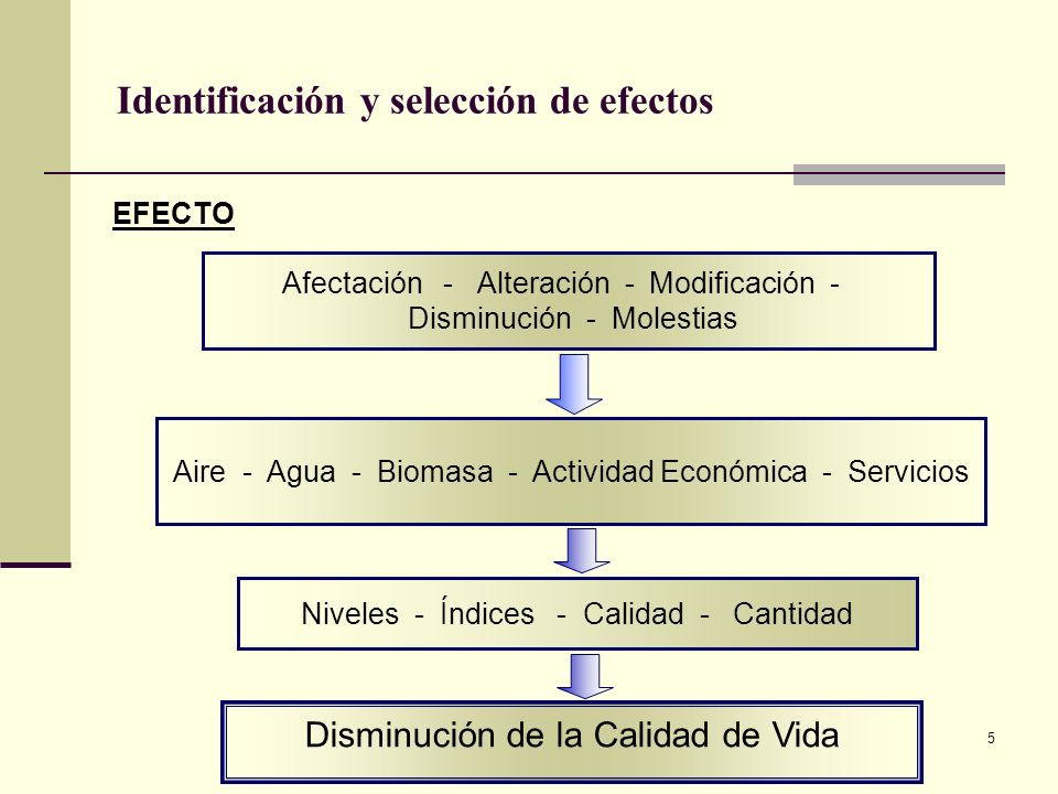 5 Identificación y selección de efectos Disminución de la Calidad de Vida EFECTO Afectación - Alteración - Modificación - Disminución - Molestias Nive