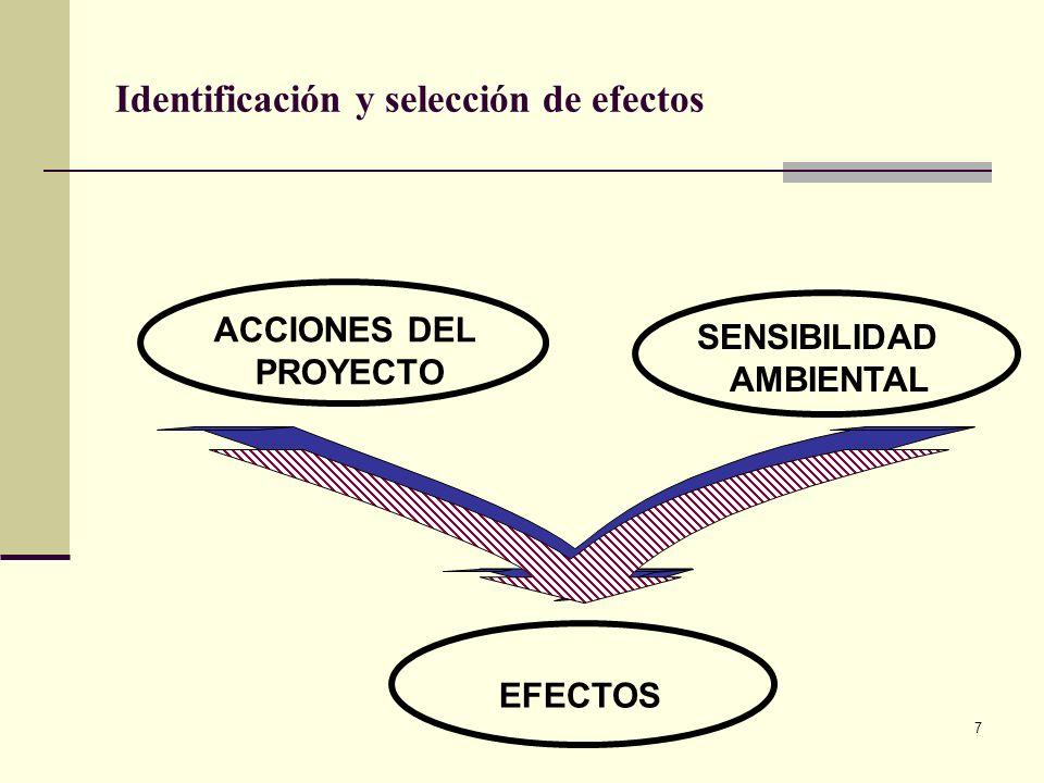7 ACCIONES DEL PROYECTO SENSIBILIDAD AMBIENTAL EFECTOS Identificación y selección de efectos