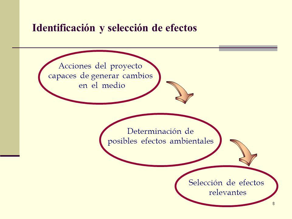 8 Selección de efectos relevantes Acciones del proyecto capaces de generar cambios en el medio Determinación de posibles efectos ambientales