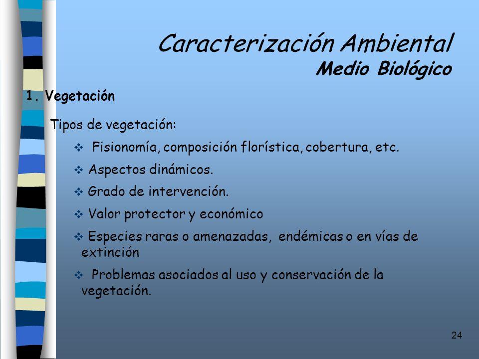 24 Caracterización Ambiental Medio Biológico 1. Vegetación Tipos de vegetación: Fisionomía, composición florística, cobertura, etc. Aspectos dinámicos