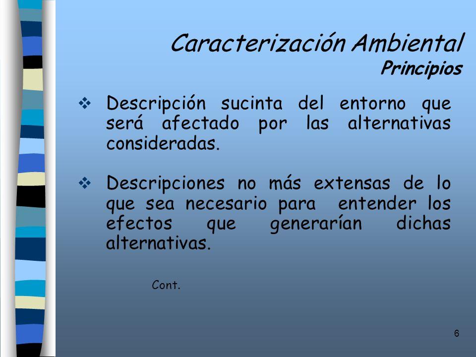 6 Caracterización Ambiental Principios Descripción sucinta del entorno que será afectado por las alternativas consideradas. Descripciones no más exten