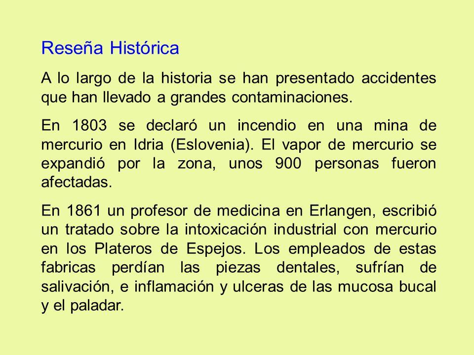Reseña Histórica A lo largo de la historia se han presentado accidentes que han llevado a grandes contaminaciones. En 1803 se declaró un incendio en u