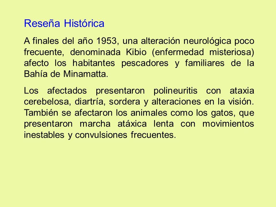 Reseña Histórica A finales del año 1953, una alteración neurológica poco frecuente, denominada Kibio (enfermedad misteriosa) afecto los habitantes pes