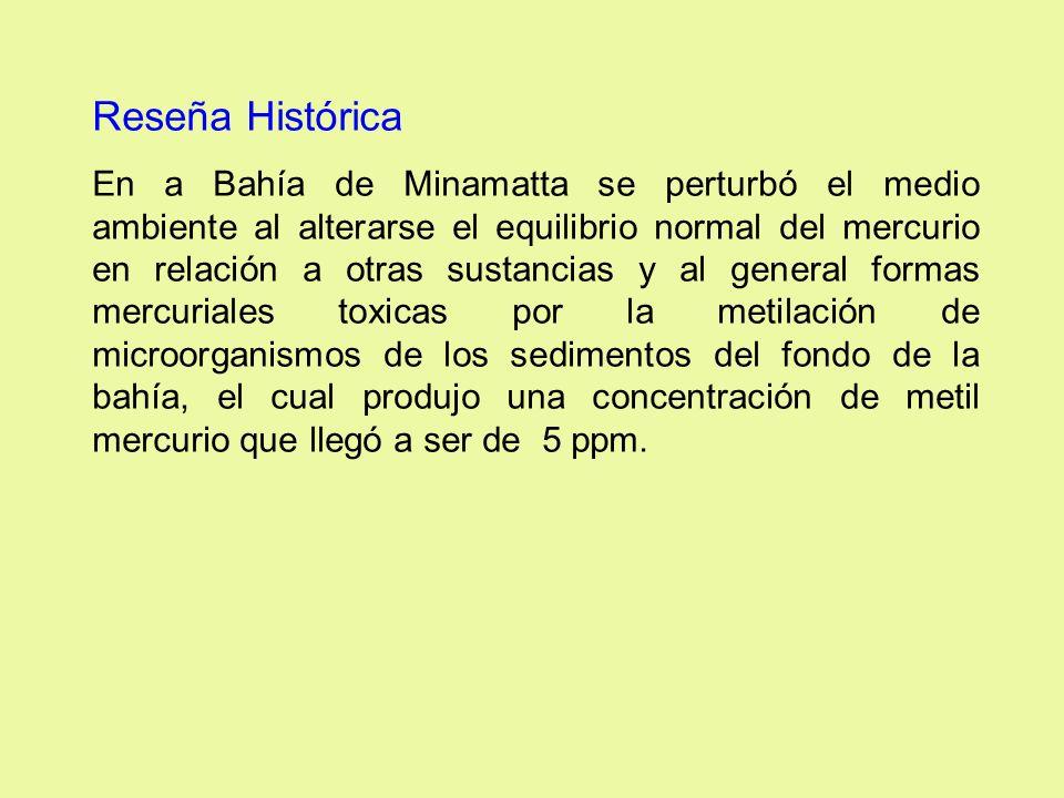 Reseña Histórica En a Bahía de Minamatta se perturbó el medio ambiente al alterarse el equilibrio normal del mercurio en relación a otras sustancias y
