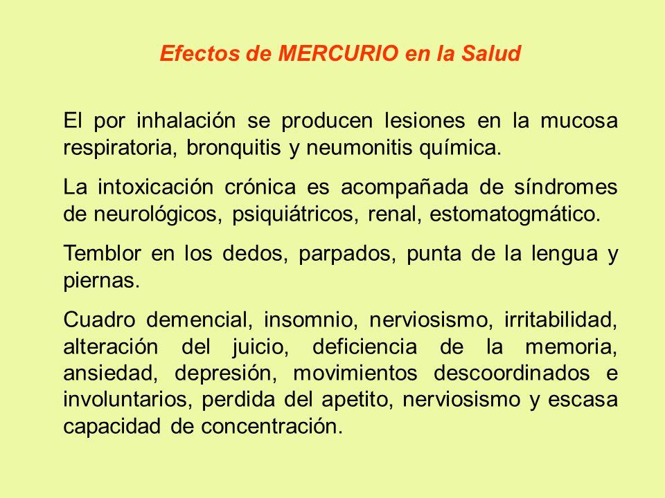 Efectos de MERCURIO en la Salud El por inhalación se producen lesiones en la mucosa respiratoria, bronquitis y neumonitis química. La intoxicación cró