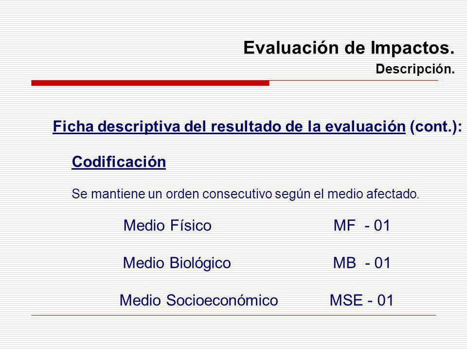 Codificación Se mantiene un orden consecutivo según el medio afectado. Medio FísicoMF - 01 Medio BiológicoMB - 01 Medio SocioeconómicoMSE - 01 Evaluac